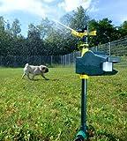 Exbuster Katzenvertreiber: Wasserstrahl-Tiervertreiber, Bewegungsmelder, gegen Hunde, Katzen UVM. (Bewegungsmelder Wasser spritzt) - 3