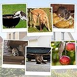 Gardigo Solar Tiervertreiber, Hundeschreck, Katzenschreck, Marderschreck, Waschbärvertreiber inkl. Erdspieß -